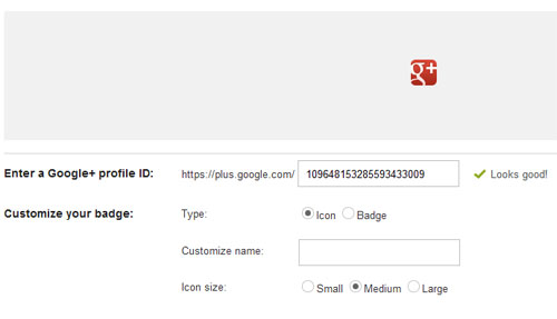 Google+ Profile widget or button