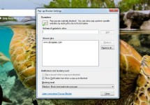 How to Enable or Disable IE9 Popup Blocking Individually or on a Whole