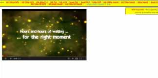 pwn youtube