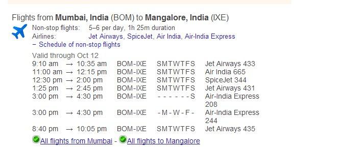 Google Search Flight Search