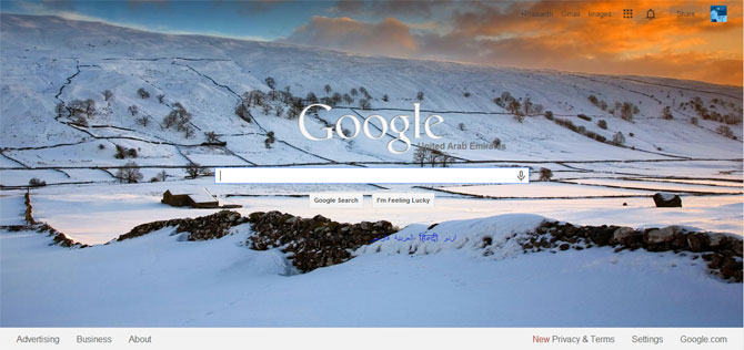 Bing wallpaper on Google Home Page