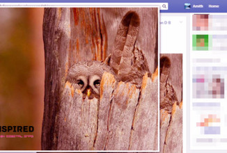 "Zoom in on ""Any Photos"" on Facebook Just by a Mouse Hover [Chrome Plugin]"