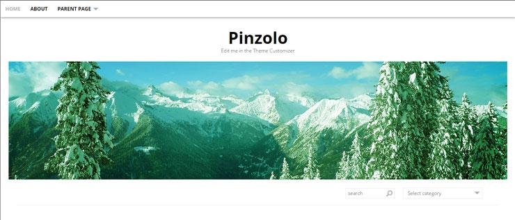 pinzolo free best wp photography theme