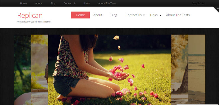 replican free best wp photography theme