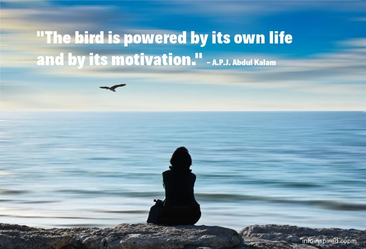 04 WhatsApp DP - THE BIRD IS POWERED BY ITS OWN LIFE AND BY ITS MOTIVATION