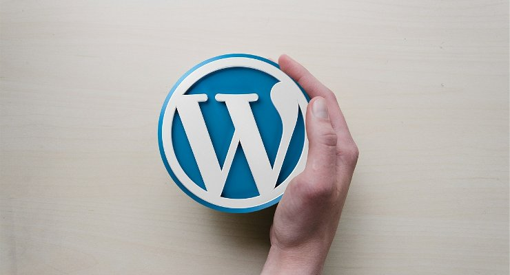 Plugins and Theme Used by Rival Blogs on WordPress