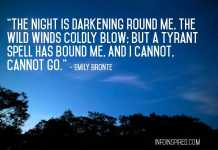 """""""The night is darkening round me, The wild winds coldly blow; But a tyrant spell has bound me, And I cannot, cannot go.""""-Emily Bronte"""
