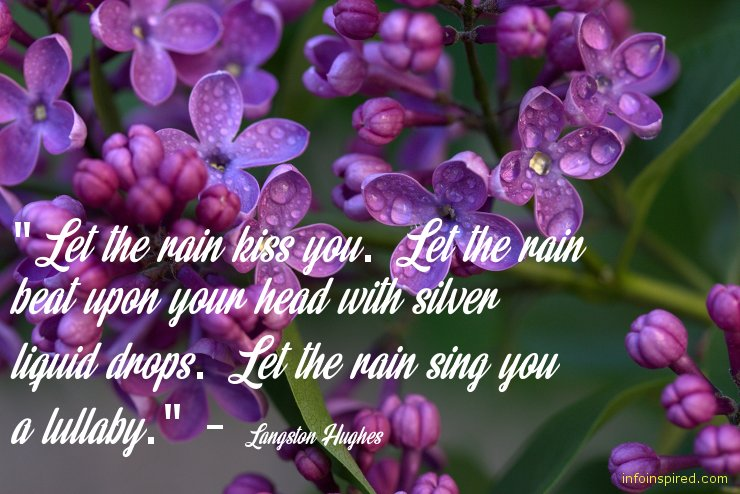 Rain Inspired Love Related Quotes By Different Authors
